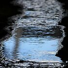 Water in the Alley by reindeer