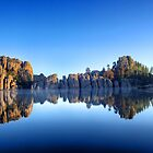 Lake Sylvan Reflection  by Luann wilslef