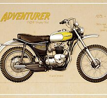 Triumph Trophy TR5T by Tony  Newland
