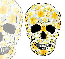 Skull Frangipani Flowers White Yellow by amanda metalcat