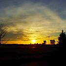 Plover Sunset by farmbrough