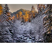 In All His Glory ~ Brice Creek ~ Photographic Print
