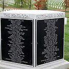 Arlington's Pentagon Memorial by Cora Wandel
