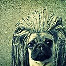 Do You Think I Need a Rasta Hat? by Maria  Gonzalez