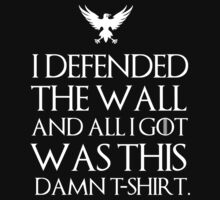 I defended the wall and all I got was this damn t-shirt T-Shirt