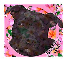 Staffy Dog Goes Floral by amanda metalcat