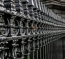 Metal Railings by Chris L Smith