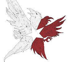 InFamous Second Son Eagles by TrailBrazzer