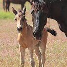 Mother's Love by Gene Praag