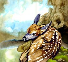 Red Deer Fawn Parked in the Fern by Patricia Howitt