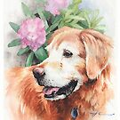 Old friend retriever watercolor by Mike Theuer