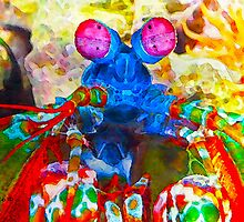 Ocean Creatures:  Peacock Mantis Shrimp by Bunny Clarke