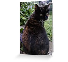 Cat Joins The Party Greeting Card