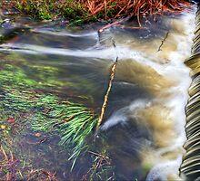 Meditative Weir. by eXparte-se