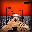 A Pier on The Thumb by djphoto