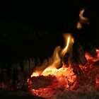 Winter warmth burning log by indiafrank