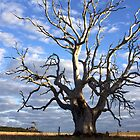 Old ghostly gum by TwoShoes