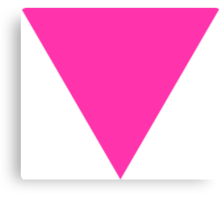 pink triangle Canvas Print