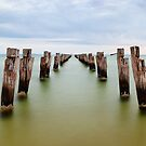 Clifton Springs Pier, Victoria, Australia by Michael Boniwell
