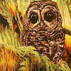 Hoot by IanLeeOliver