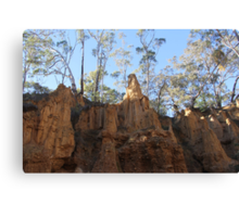 Rock formation at Golden Gully Canvas Print