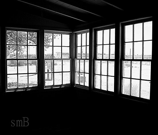 Window To The Past by Susan Bergstrom