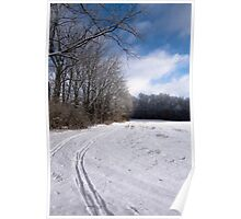 Tracks through Snowy Field Poster