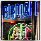 Birdland Neon, NYC by crashbangwallop