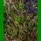 Plant Art by Kristine Kowitz