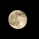 Strawberry Moon by Susan S. Kline