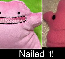 Nailed it :: Ditto Fail by Awesomwott