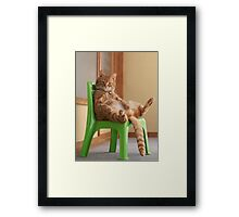 The most chilled out cat! Framed Print
