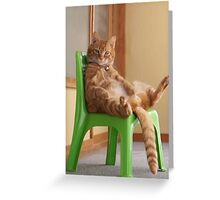 The most chilled out cat! Greeting Card