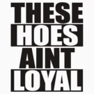 These Hoes Ain't Loyal by roderick882