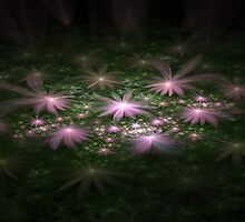 Flowers In The Night by James Brotherton