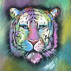 Rainbow Tiger  by Michelle Potter