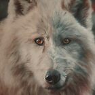 Arctic WolF by Cherise Foster