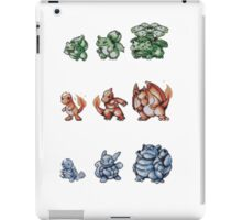 Starter Pokemon evolutions iPad Case/Skin