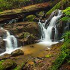Olinda Falls - Victoria by Chris Kean