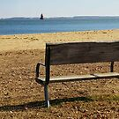 Bench at Sandy Point Park, MD  by Bine