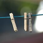 Clothes Pins. by michel bazinet