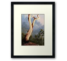 Valley View Framed Print
