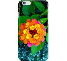 Lantana camara iPhone Case/Skin