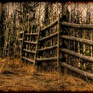 Scenic Rustic Fence in the Country by Val  Brackenridge