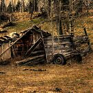Weathered Rustic Shed and Trailer by Val  Brackenridge
