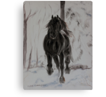 Friesan horse in winter Canvas Print
