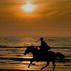 Ride at sunset by hanspeters