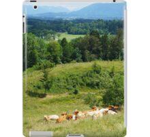 Bavaria iPad Case/Skin