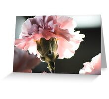 Precious Life in Pink Greeting Card