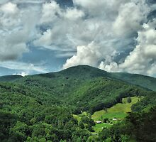 Great Smoky Mountain Trail by Liam Wolff